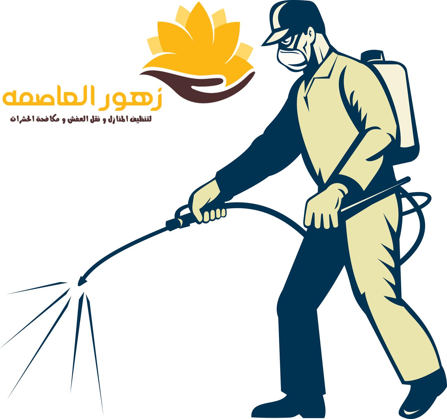 Photo of شركه مكافحه الصراصير بالرياض