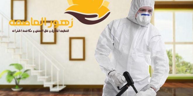 شركه رش مبيدات بالرياض