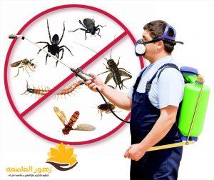 شركه مكافحه حشرات بالخرج
