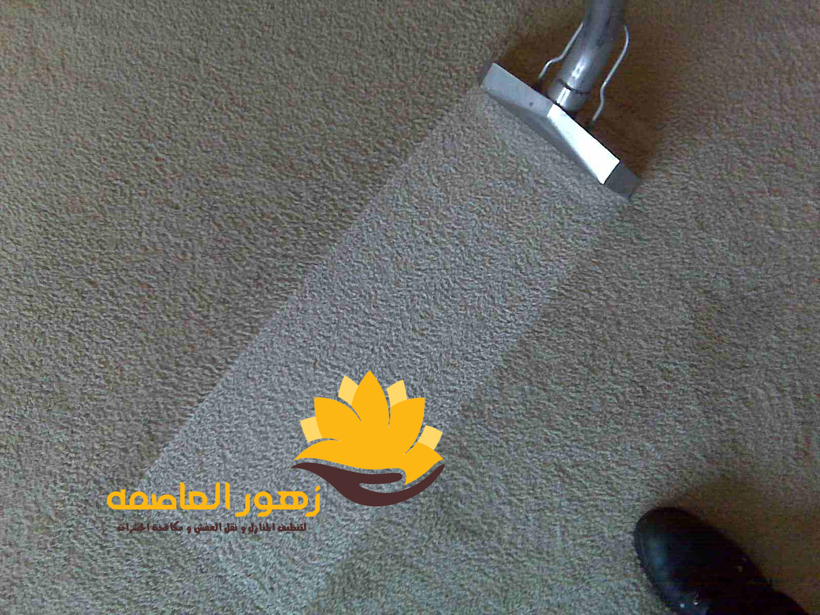 Photo of شركه تنظيف موكيت بالرياض