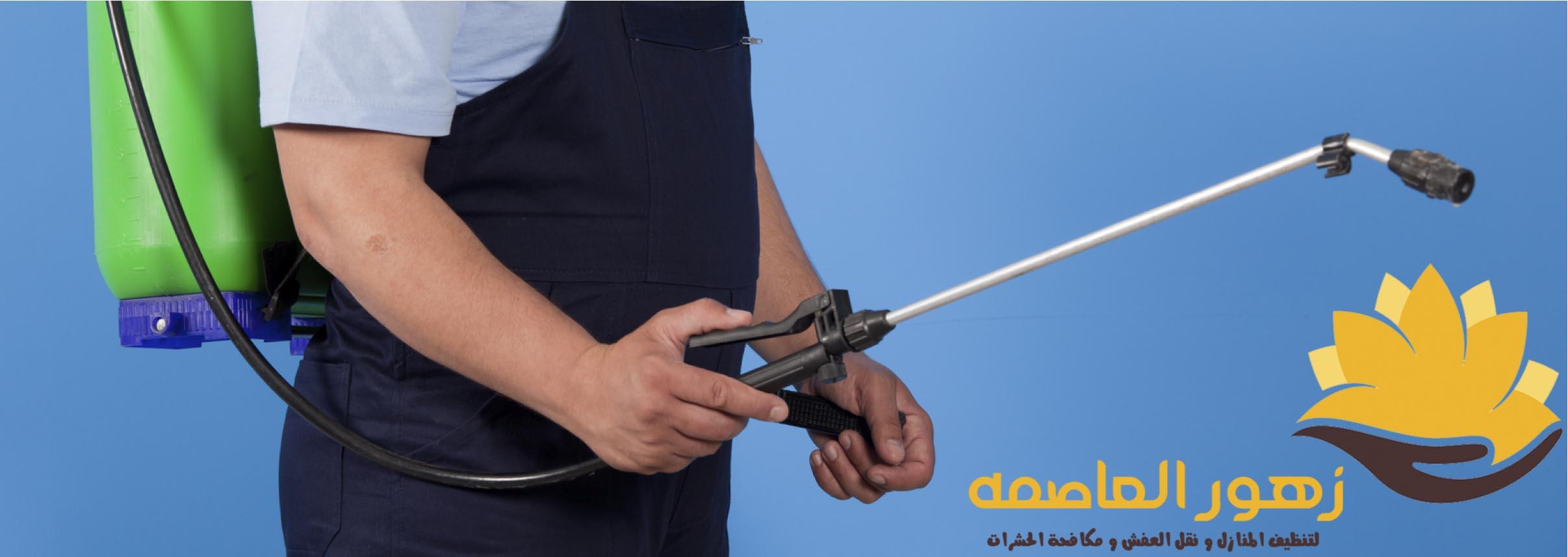 Photo of شركه مكافحه حشرات بالخرج